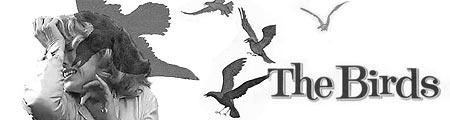читать дальше Мартин Кэмпбелл берется за «Птиц»