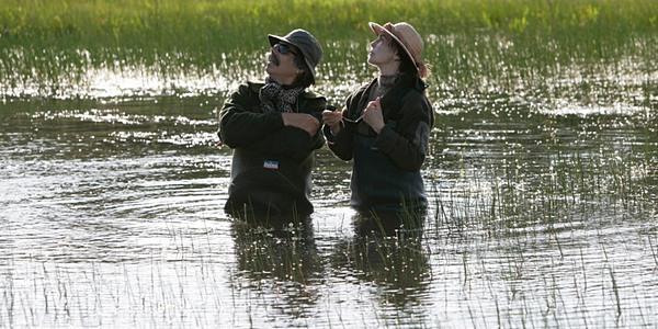 «Сфера колдовства»:  есть в графском парке старый пруд...