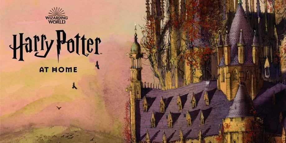 #Лучшедома с Гарри Поттером