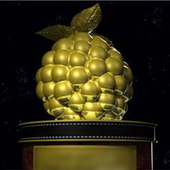 Номинанты премии «Золотая малина-2010»