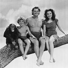 Возвращение человека-обезьяны