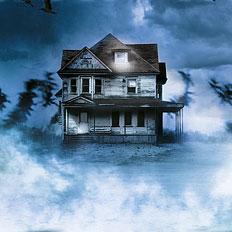 Дом на болотах