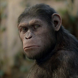«Планета обезьян» должна продолжиться