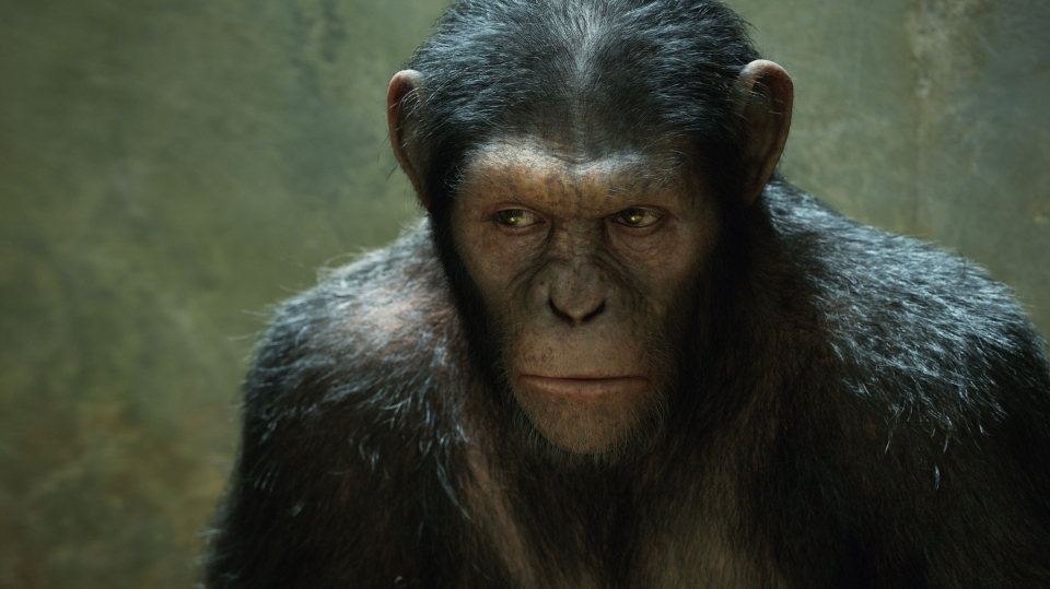 Восстание планеты обезьян.