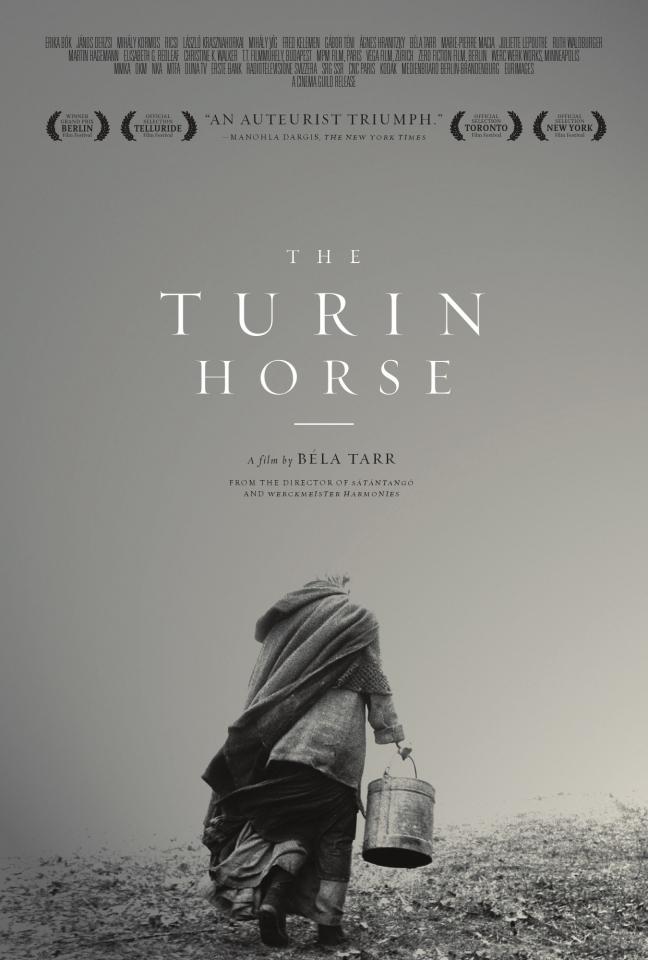 плакат фильма постер Туринская лошадь
