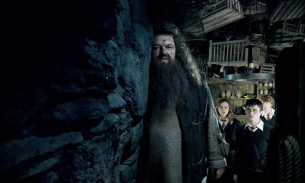 кадры из фильма Гарри Поттер и Орден Феникса Робби Колтрейн, Эмма Уотсон, Руперт Гринт, Дэниэл Рэдклифф,