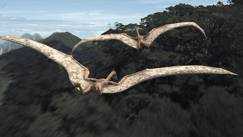 кадры из фильма Тарбозавр 3D