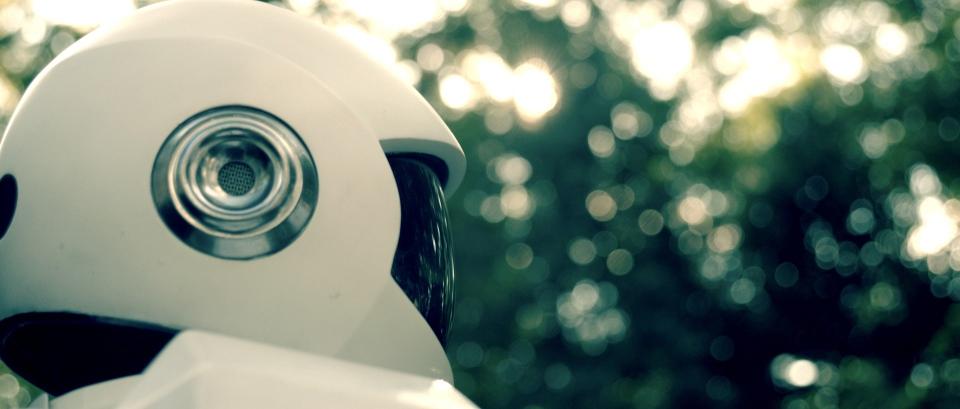 кадры из фильма Робот и Фрэнк Питер Сарсгард,