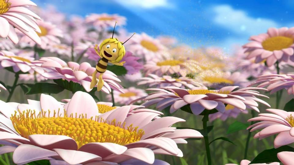 кадры из фильма Пчелка Майя