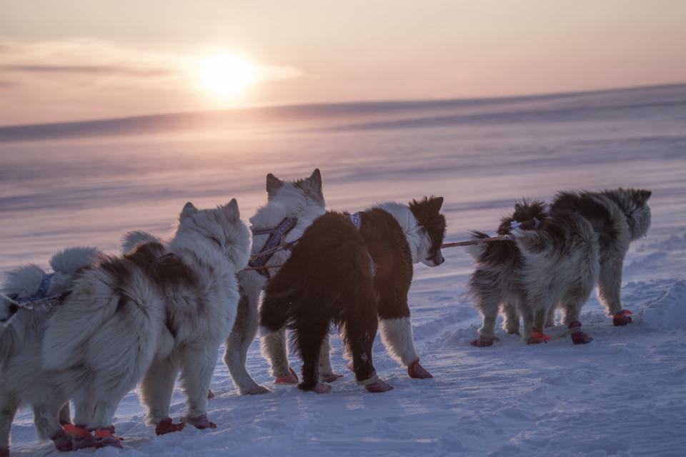 кадры из фильма Арктика Великая. Часть первая. Почитание духа огня