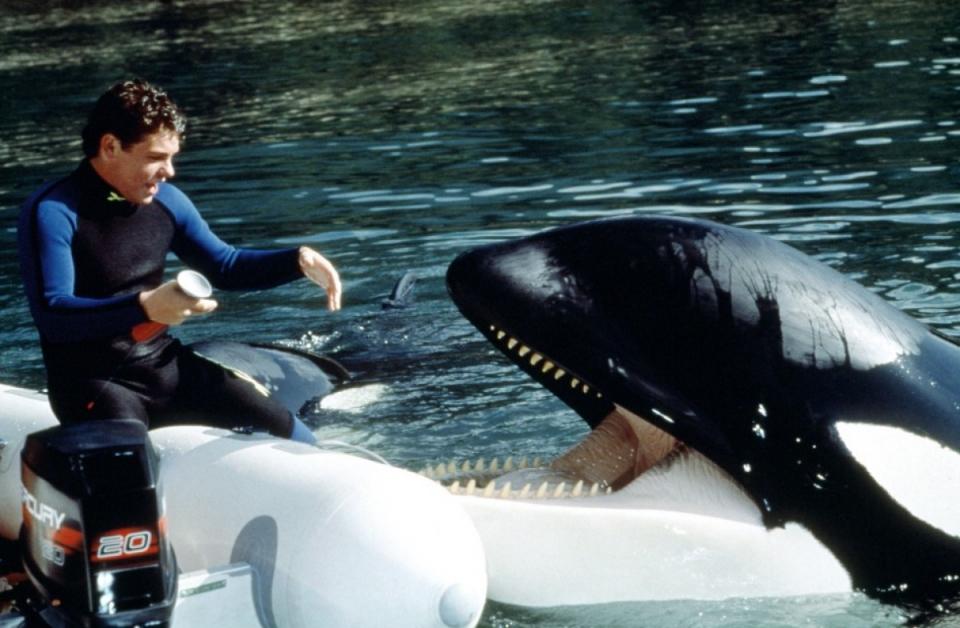 кадры из фильма Освободите Вилли 3: Спасение Джейсон Джеймс Рихтер,