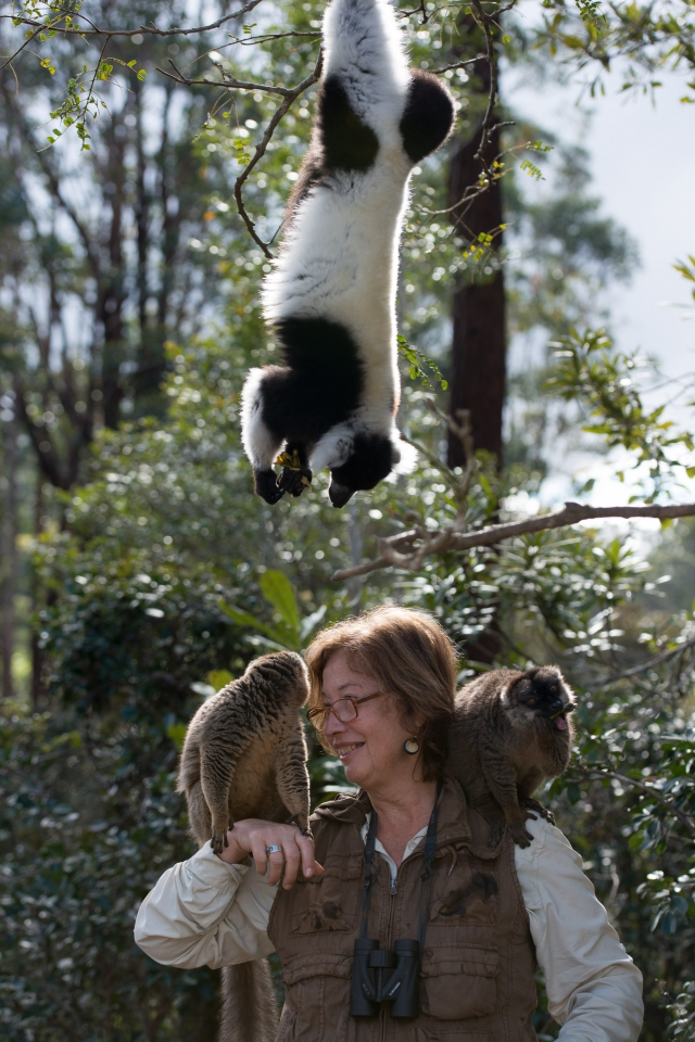 со съемок Остров лемуров: Мадагаскар