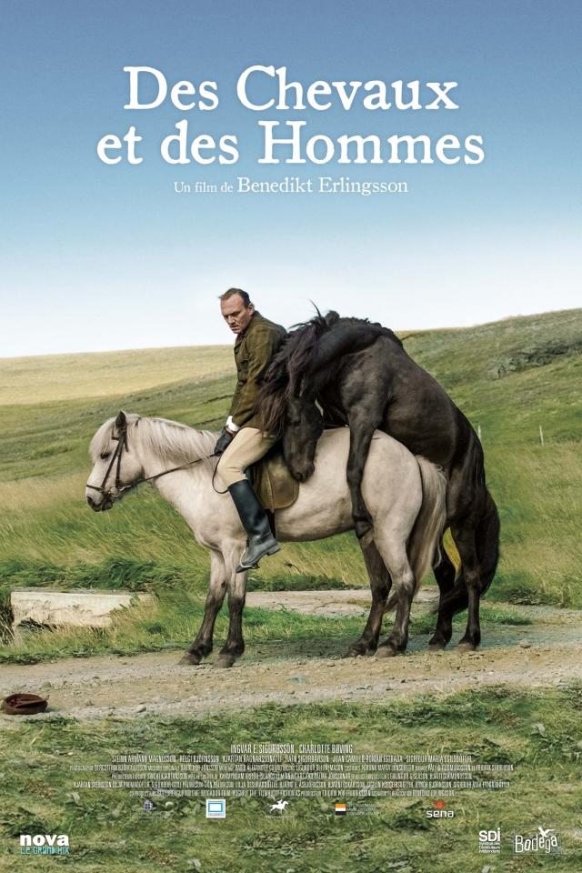 плакат фильма постер О лошадях и людях