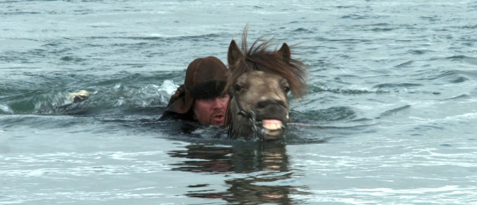 кадры из фильма О лошадях и людях