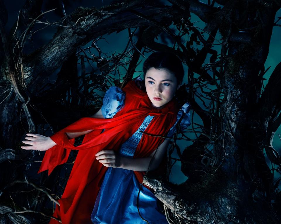 плакат фильма характер-постер textless Чем дальше в лес…