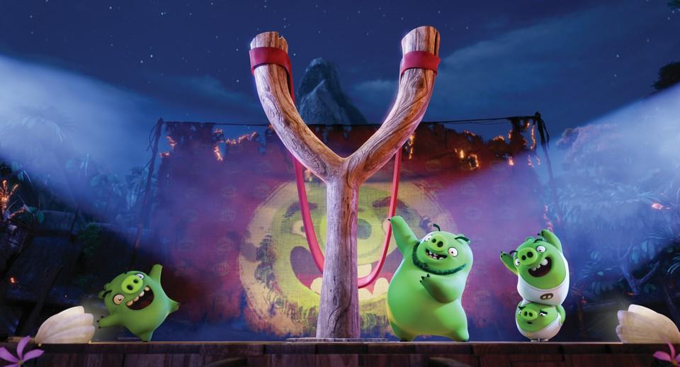 кадры из фильма Angry Birds в кино