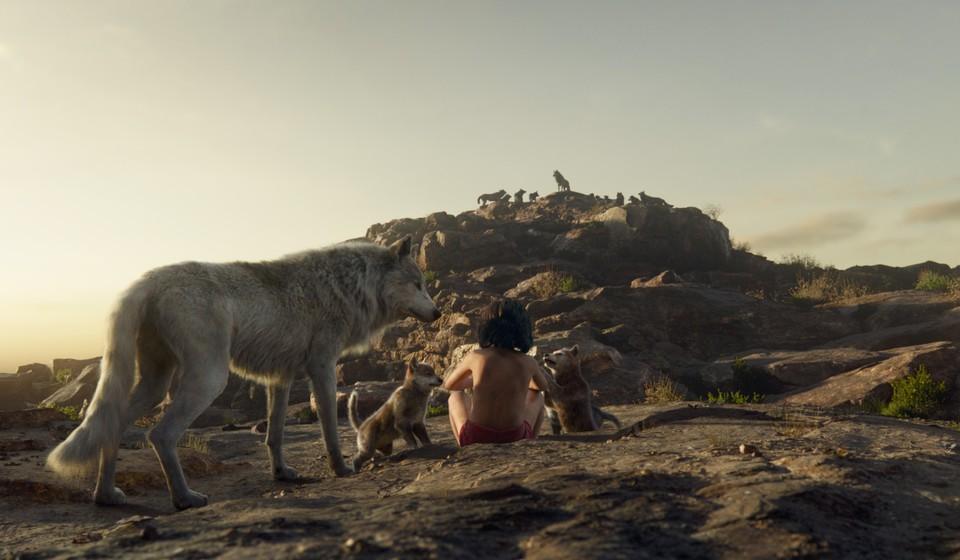 кадры из фильма Книга джунглей