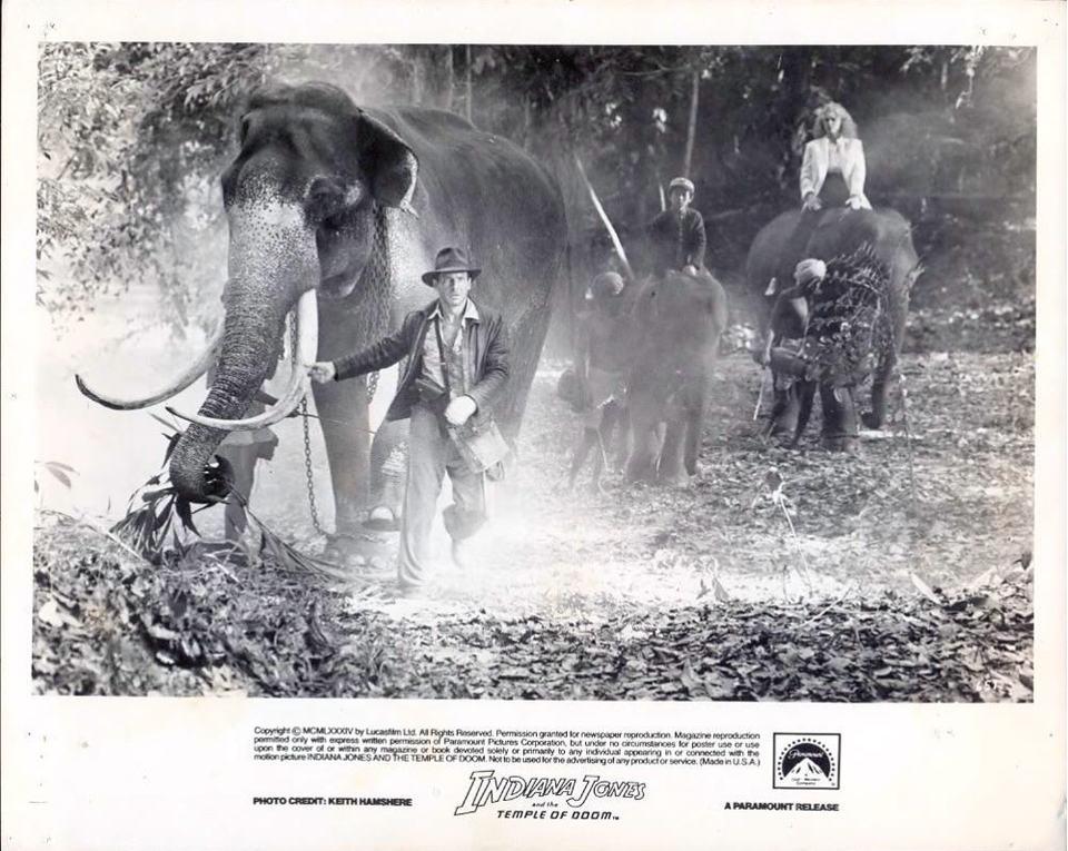 кадры из фильма Индиана Джонс и Храм судьбы