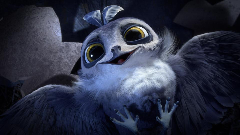 кадры из фильма Птичий дозор