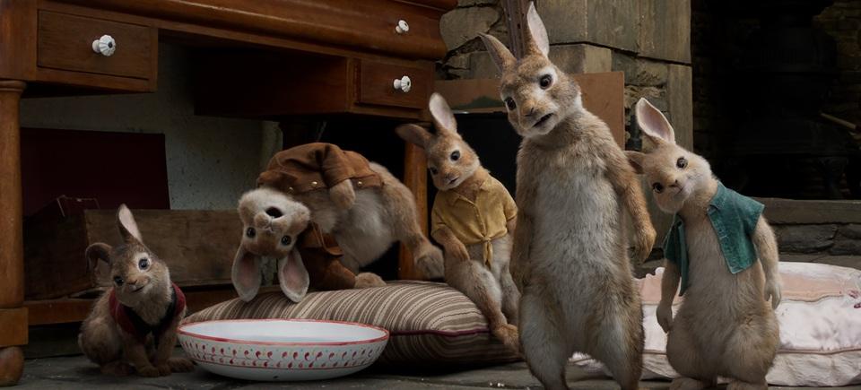 кадры из фильма Кролик Питер