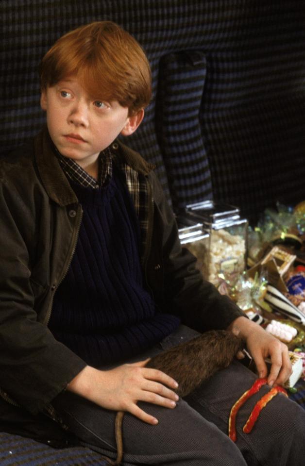кадры из фильма Гарри Поттер и Философский камень Руперт Гринт,