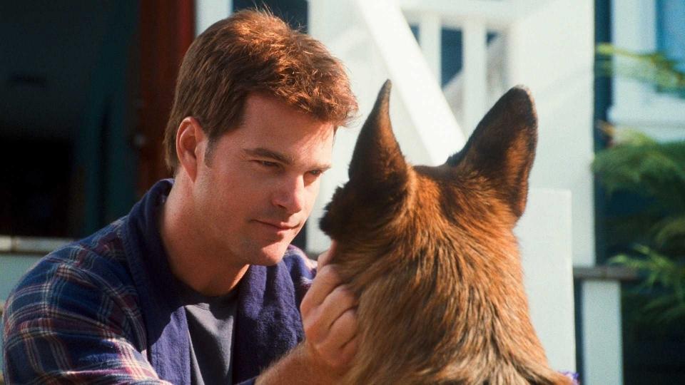 кадры из фильма Кошки против собак: Месть Китти Галор Крис О'Доннелл, Джеймс Марсден,