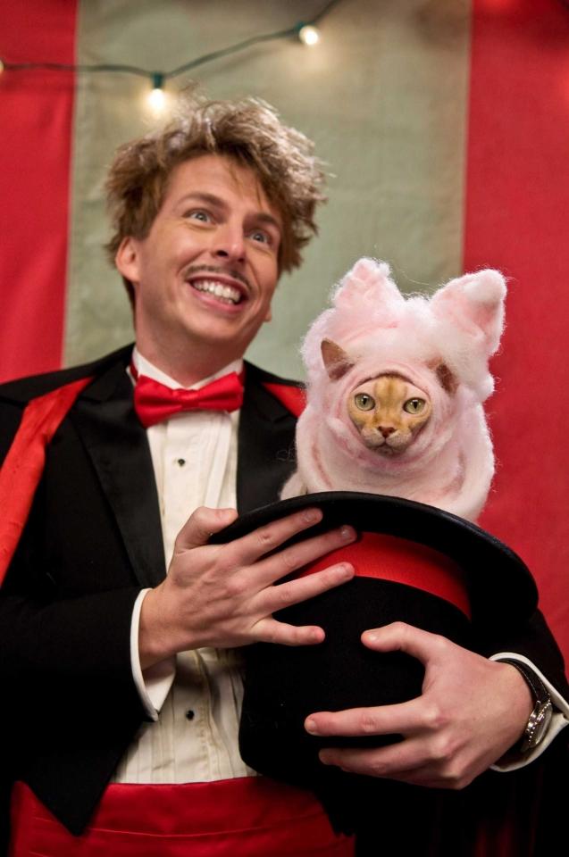 кадры из фильма Кошки против собак: Месть Китти Галор Джэк МакБрейер, Бетт Мидлер,