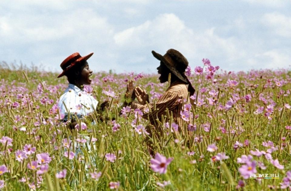 кадры из фильма Цветы лиловые полей