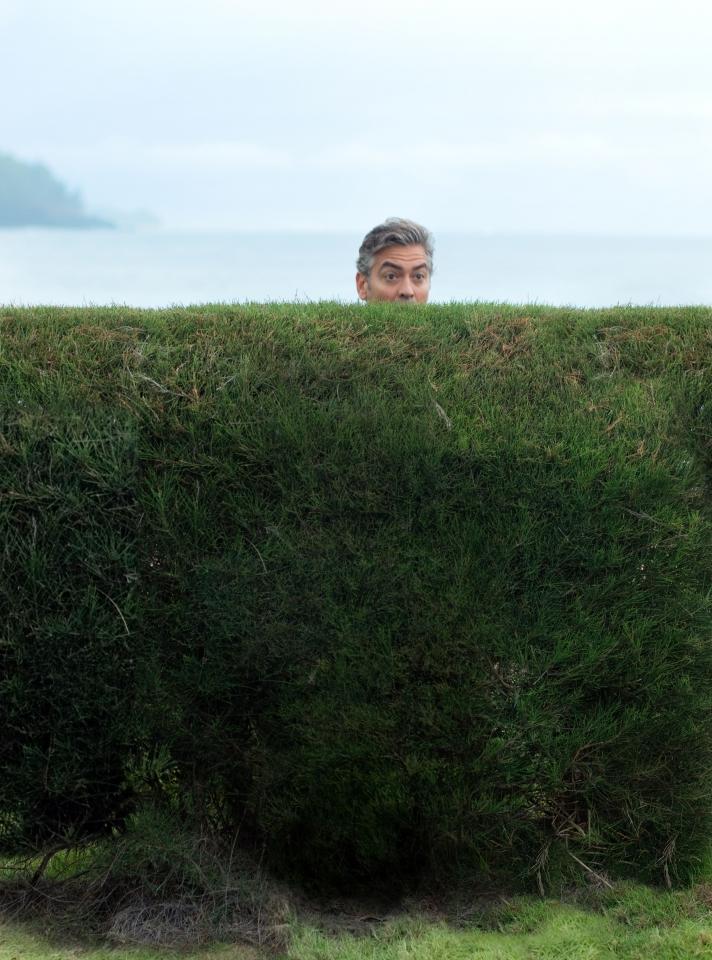 кадры из фильма Потомки Джордж Клуни,