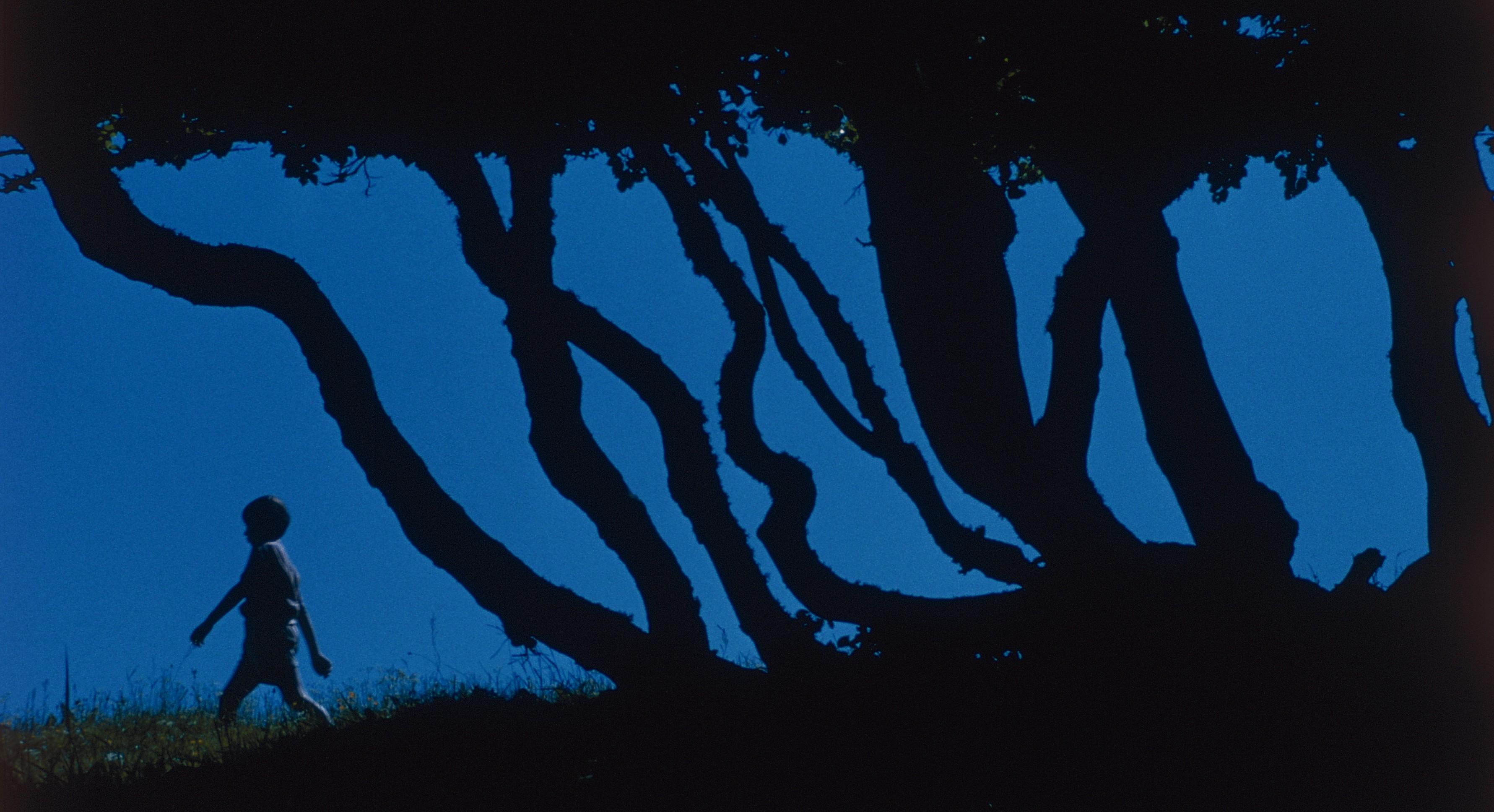 кадры из фильма Сфера колдовства