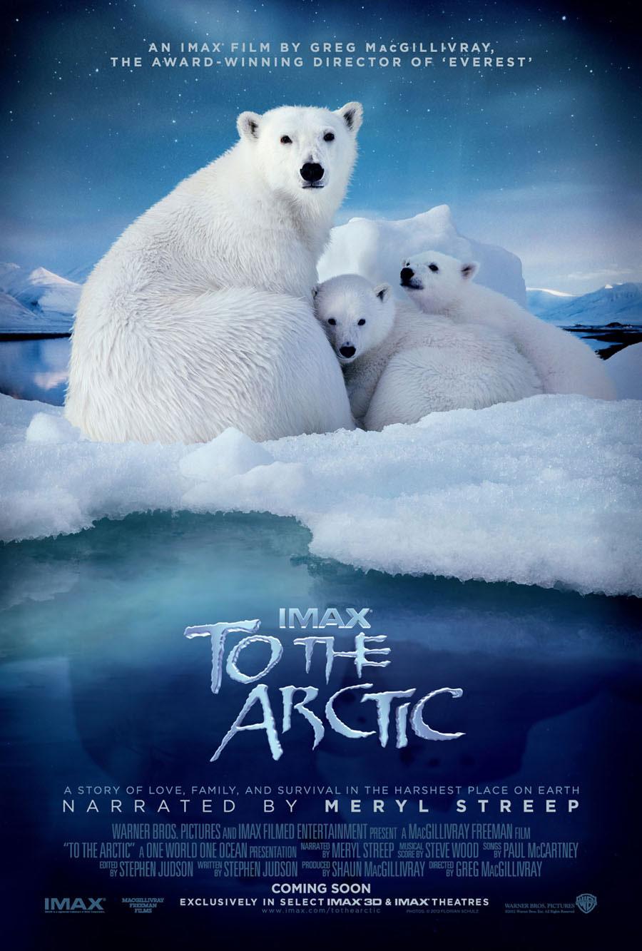 плакат фильма постер Арктика 3D