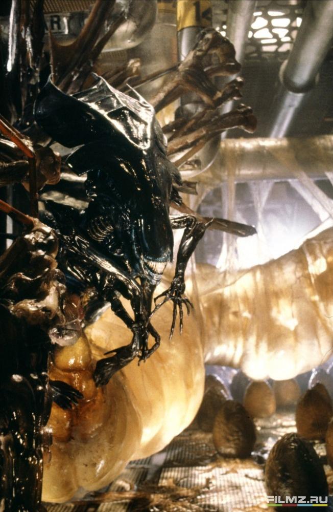 кадры из фильма Чужие