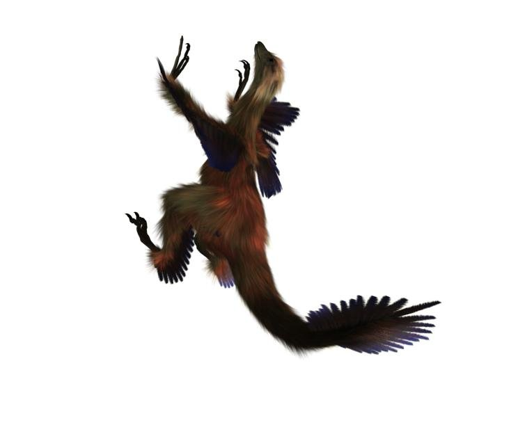 промо-слайды Тарбозавр 3D