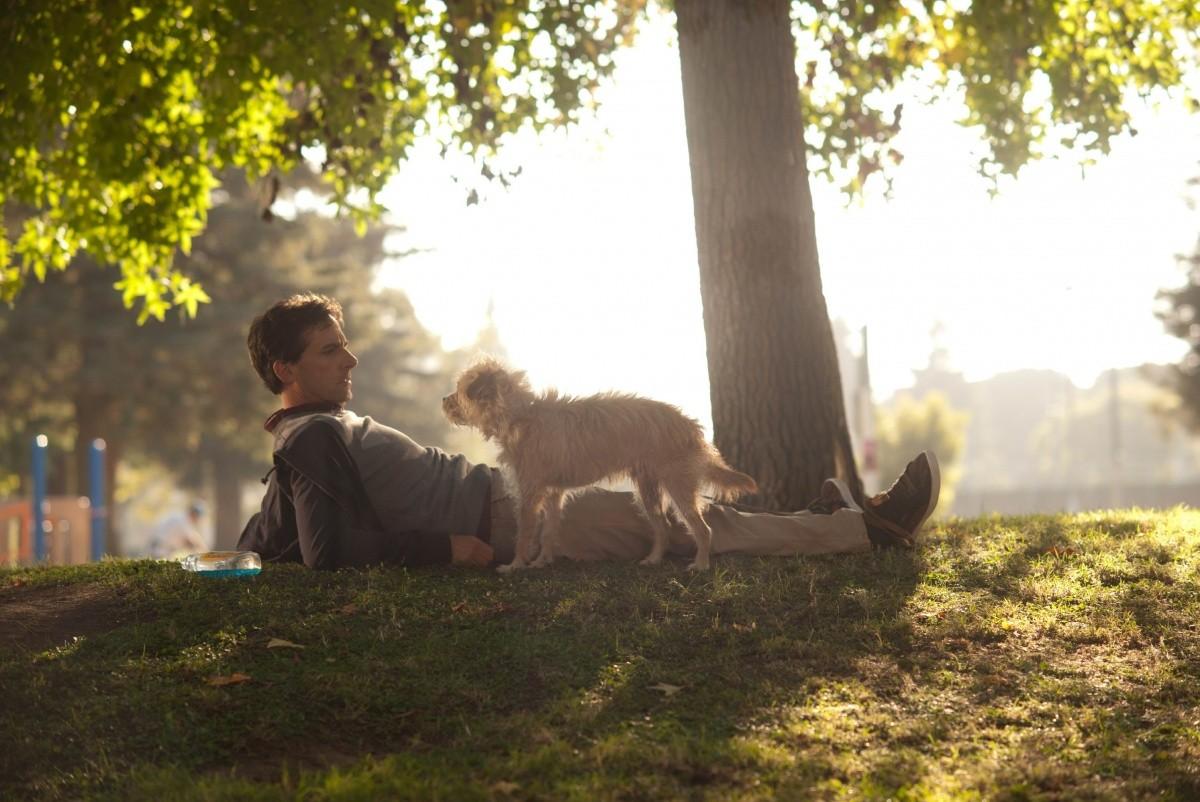кадры из фильма Ищу друга на конец света Стив Карелл,