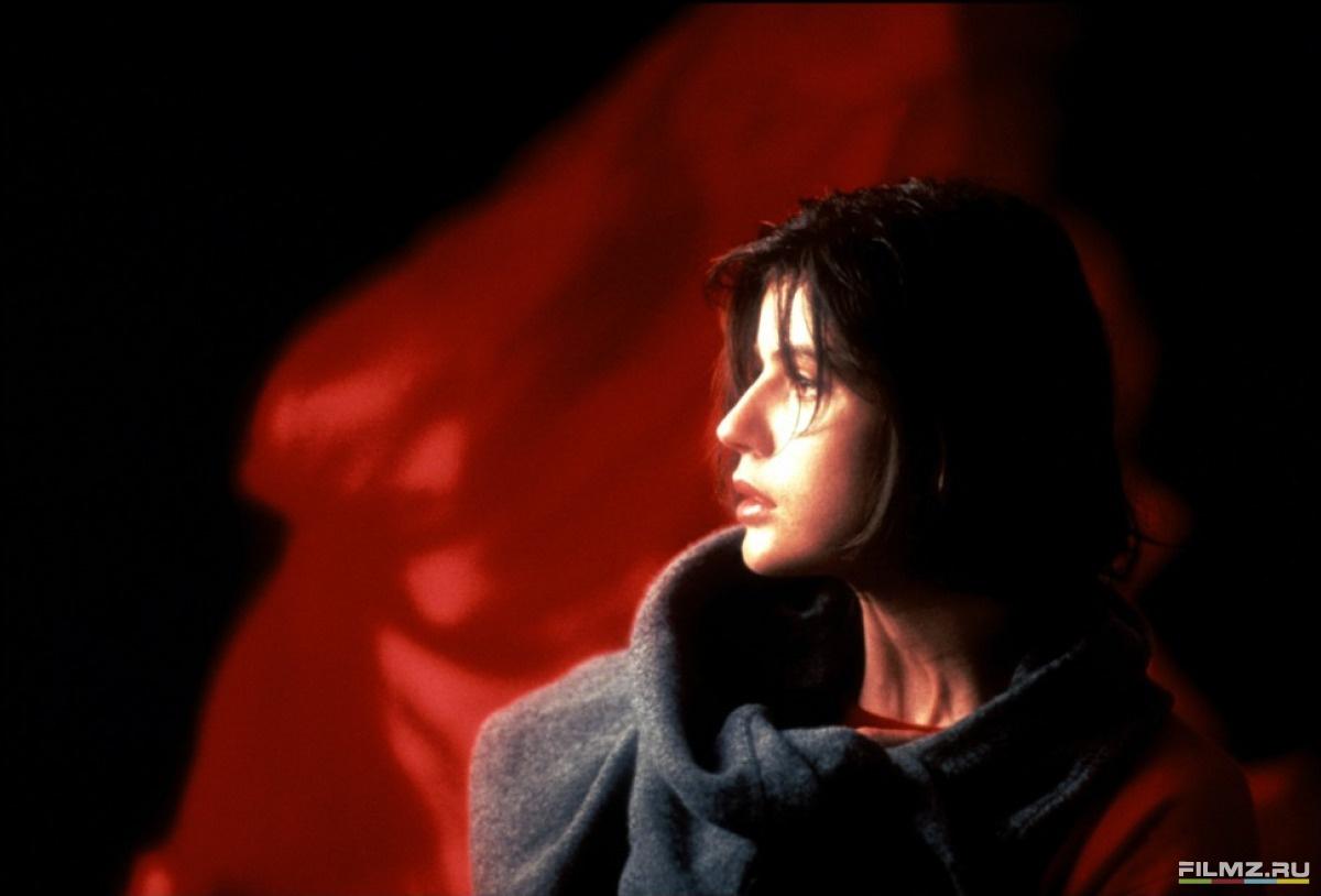 кадры из фильма Три цвета: Красный Ирен Жакоб,