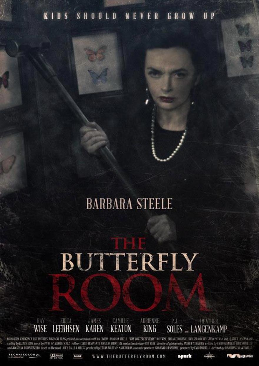 плакат фильма постер Комната бабочек