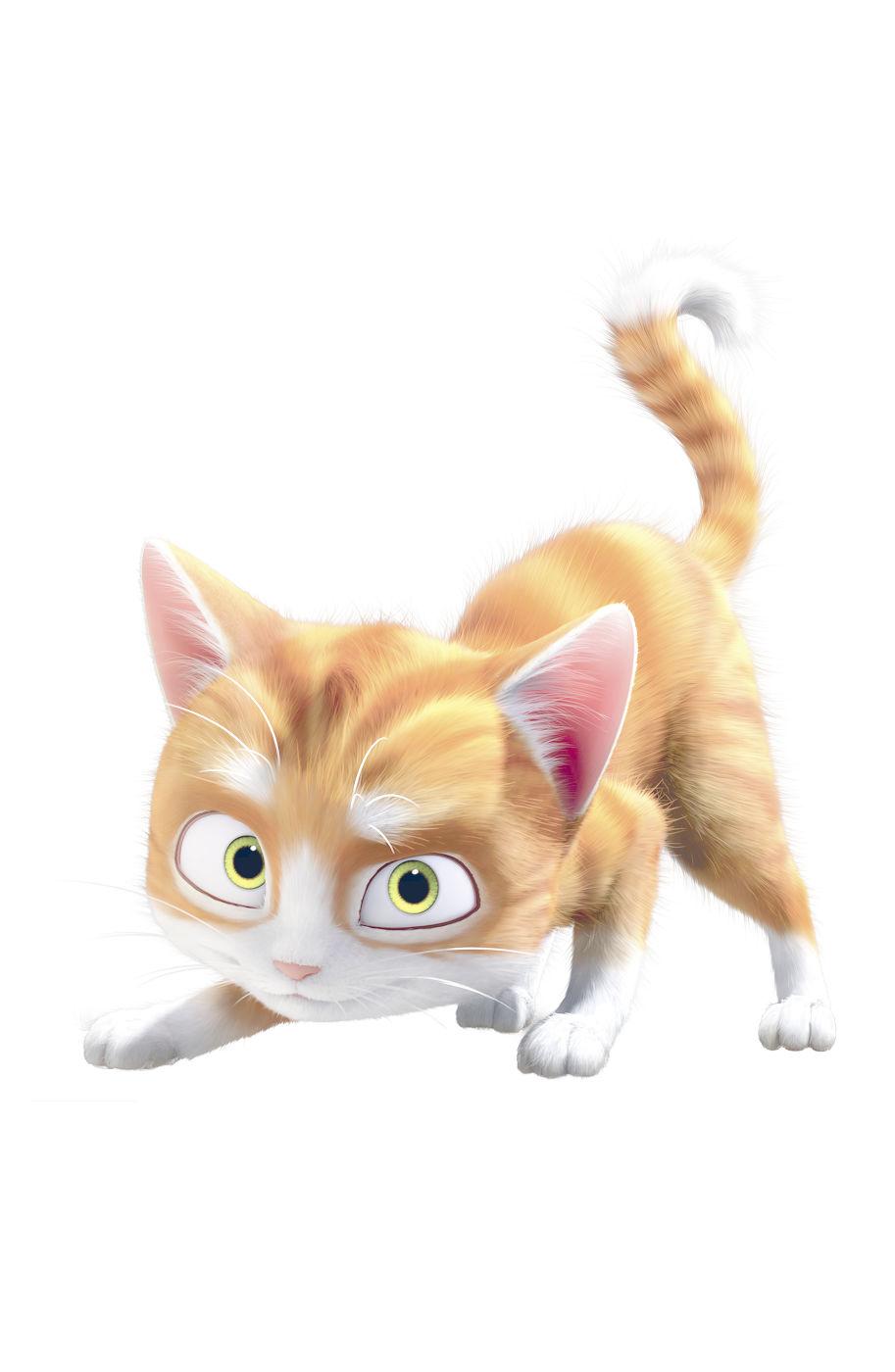 Скачать кот гром mp4