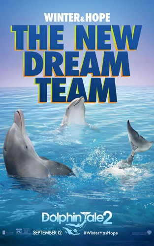Фильма постер история дельфина 2