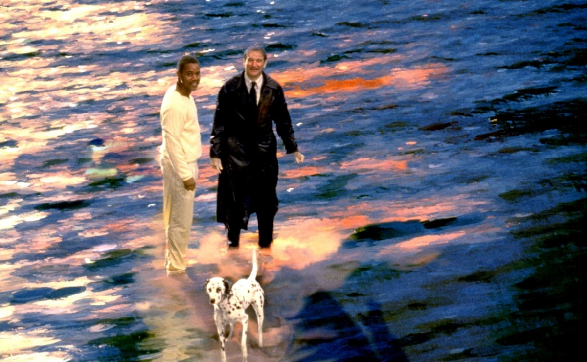 кадры из фильма Куда приводят мечты Куба Гудинг-мл., Робин Уильямс,