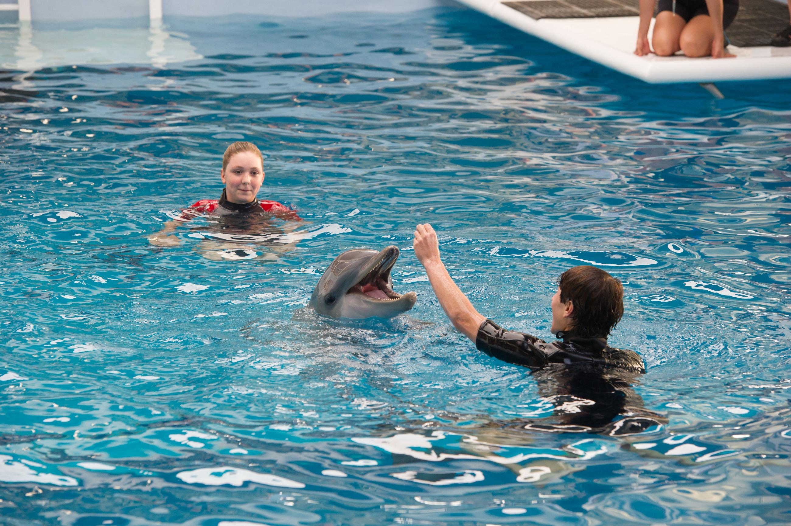 кадры из фильма История дельфина 2 Кози Цуельсдорфф, Натан Гэмбл,