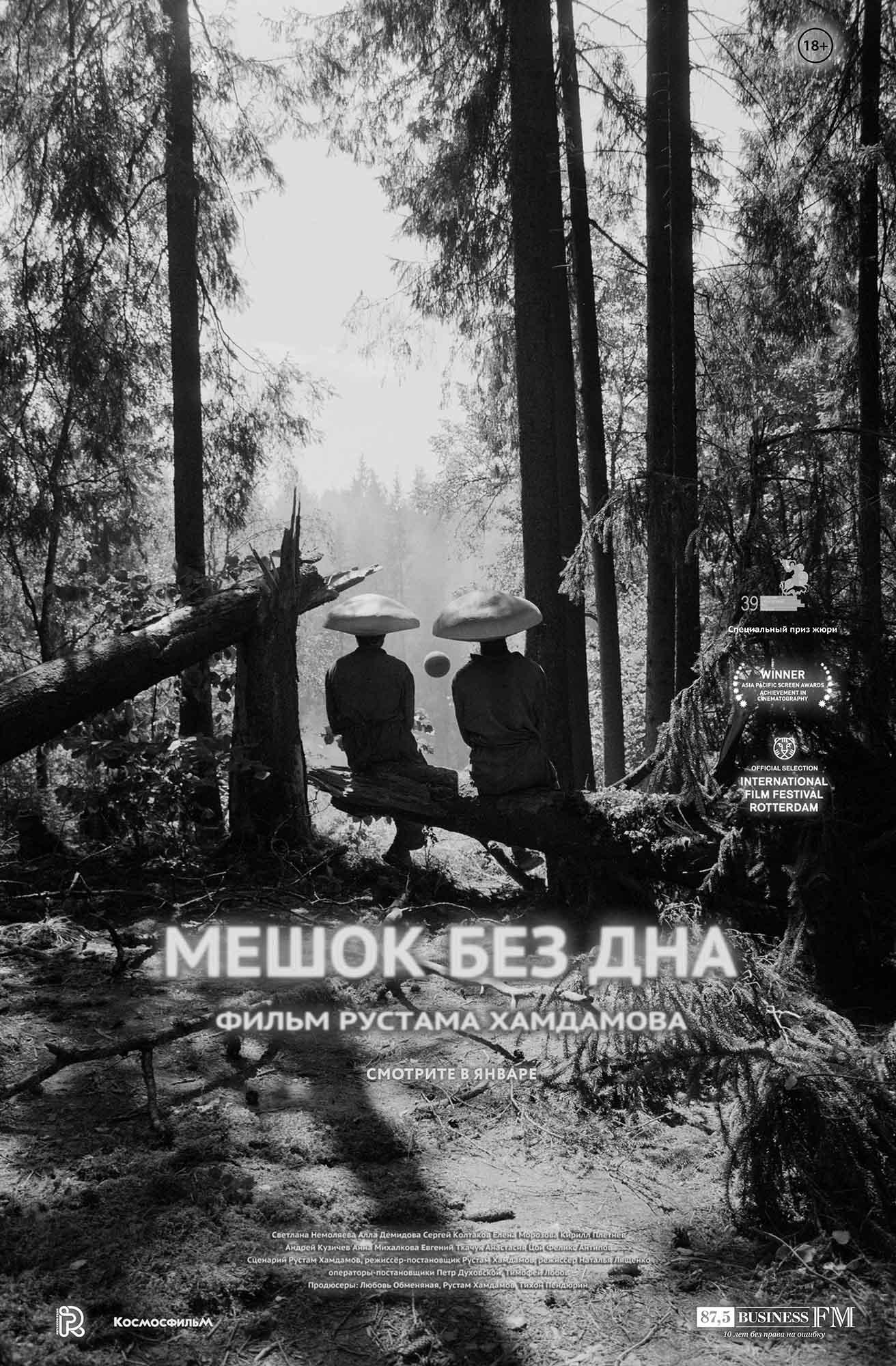плакат фильма постер Мешок без дна