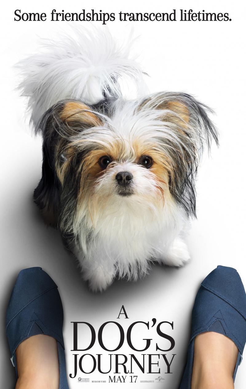 плакат фильма постер Собачья жизнь 2