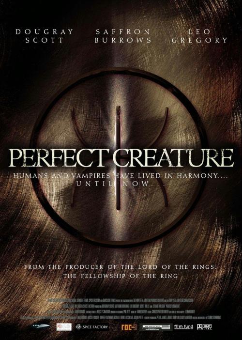 плакат фильма Идеальное создание