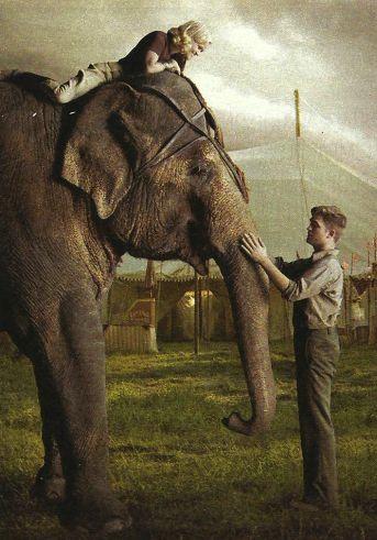 кадры из фильма Воды слонам! Риз Уизерспун, Роберт Паттинсон,
