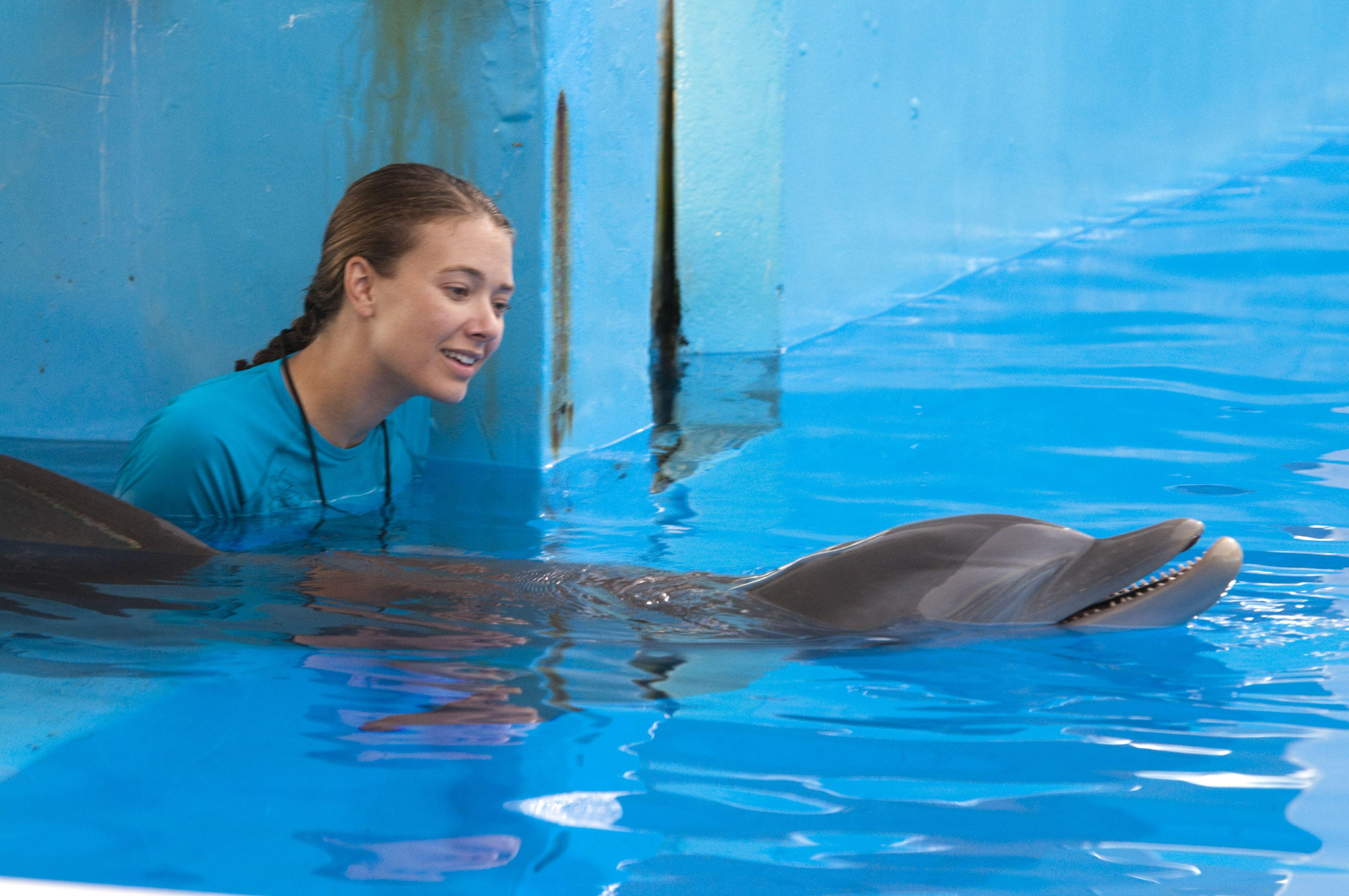 кадры из фильма История дельфина Остин Хайсмит,