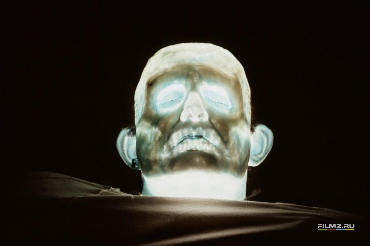 промо-слайды Молодой Франкенштейн Питер Бойл,