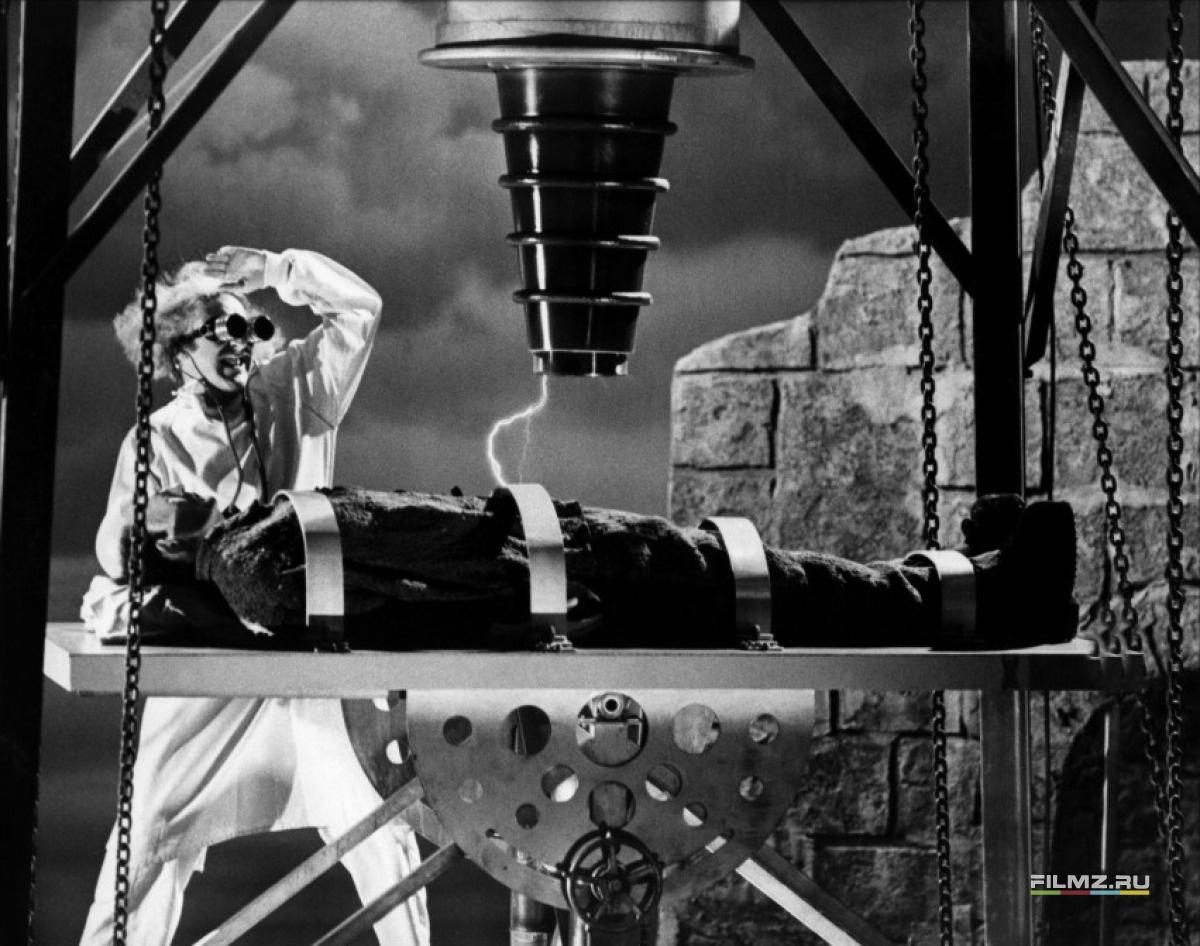 кадры из фильма Молодой Франкенштейн Джин Уайлдер, Питер Бойл,