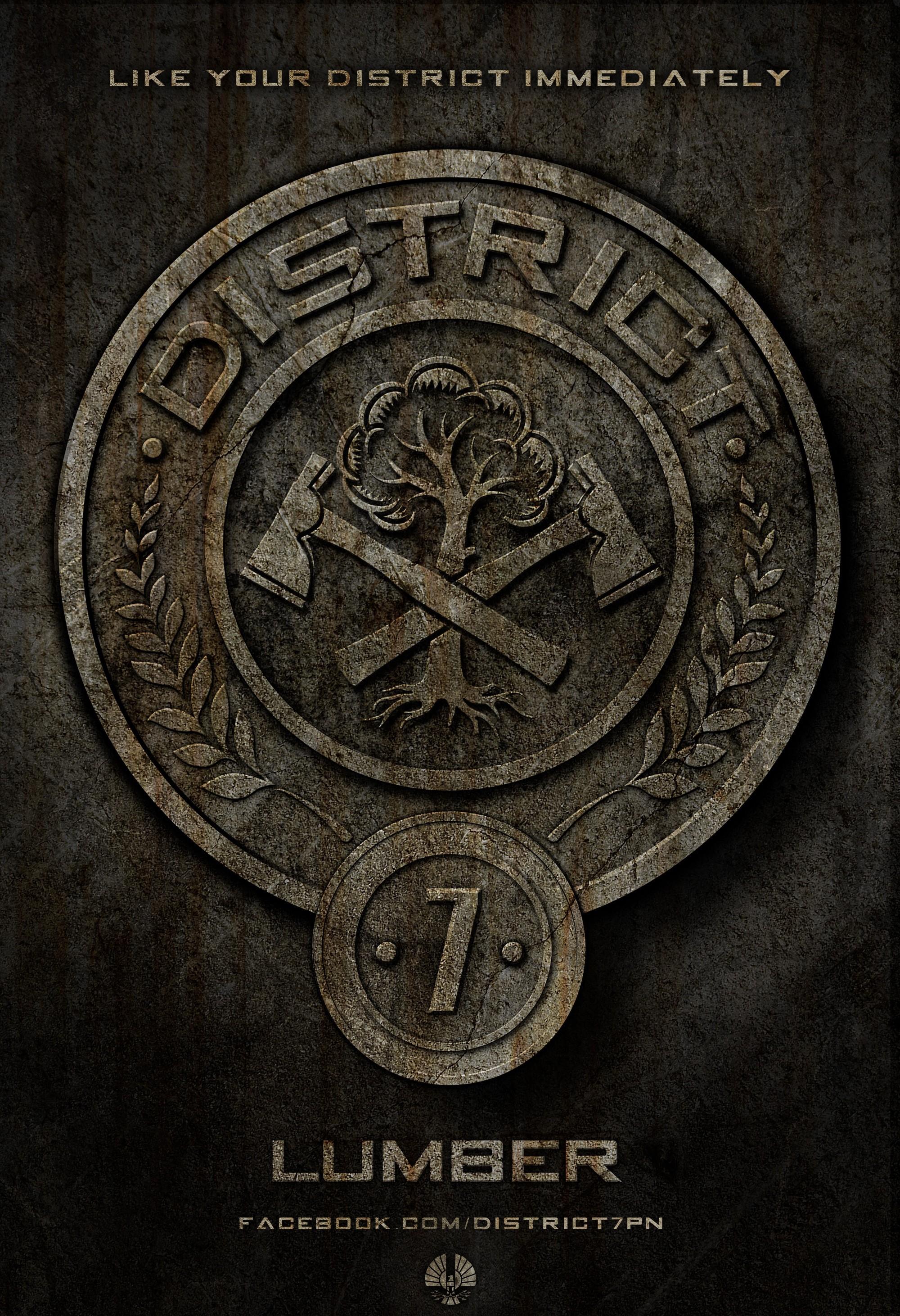 плакат фильма постер Голодные игры