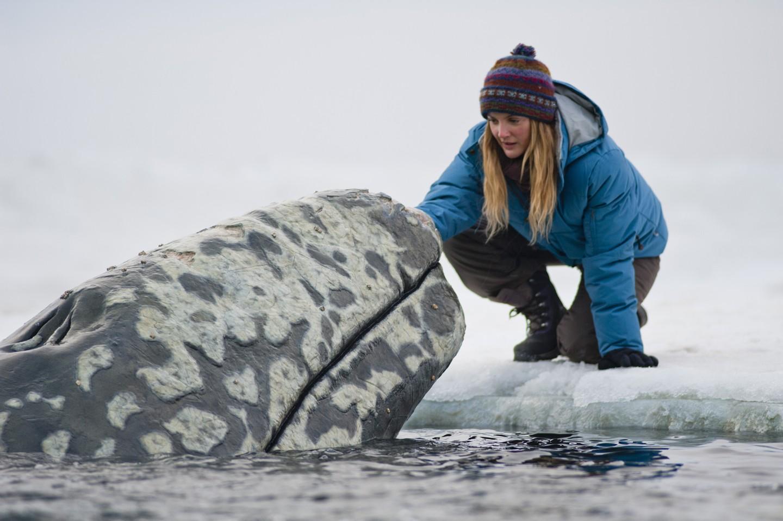 кадры из фильма Все любят китов Дрю Бэрримор,