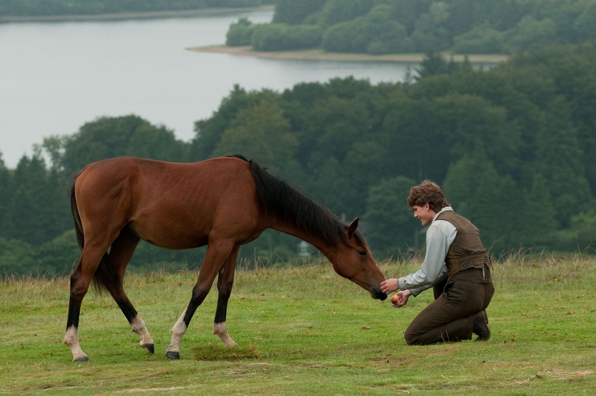 кадры из фильма Боевой конь Джереми Ирвин,